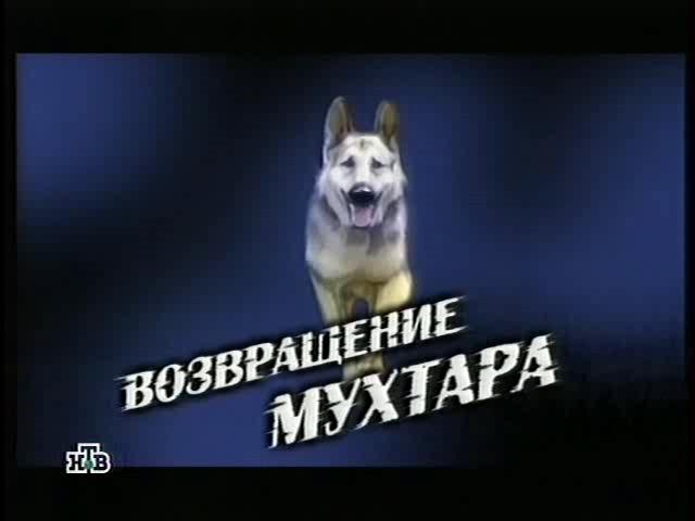 http://serial-zone.ru/inc/goods_images/v/vozvrashchenie_muhtara.jpg